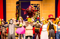 SFHS Shrek The Musical-ThesCon 2014